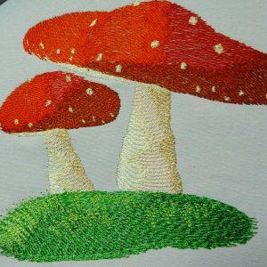 Fly Agaric Mushroom 1318