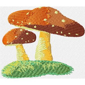 Fly Agaric Mushroom preview