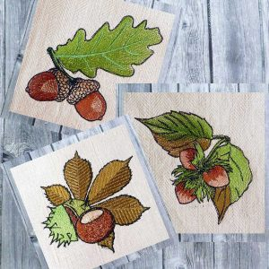 Autumn fruits set 1