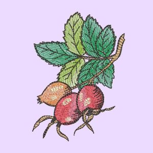Embroidery file - Rosehips preview